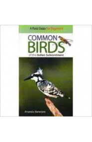 Common Birds Of The Indian Sub.Continent