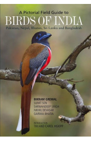 A Pictorial Field Guide To Birds Of India