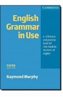 English Grammar In Use Without Answers